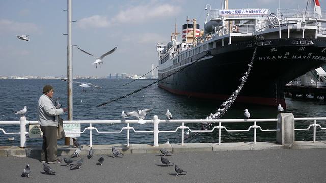 Hikawa Maru Bird Man