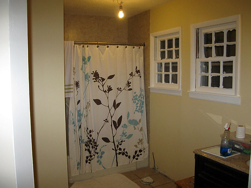 Bathroom 2-19-12