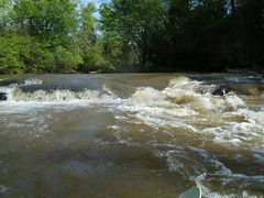 Past the First Rapid