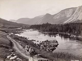 2181. Sætersdalen, Parti i Valle