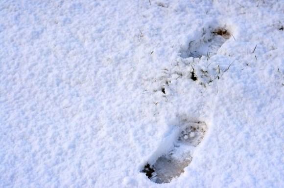 120218_footprint
