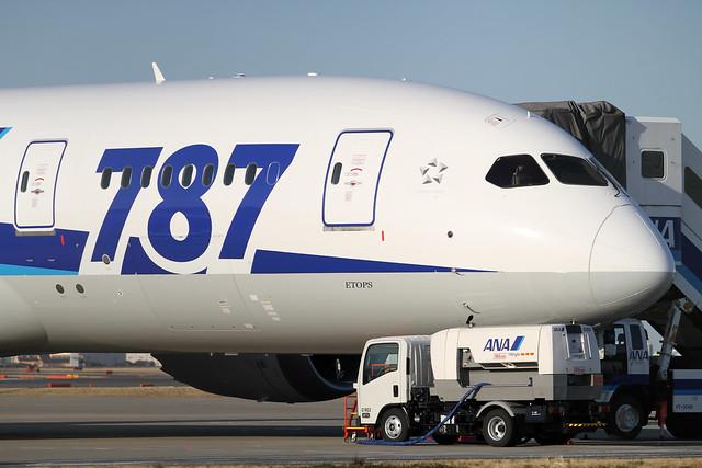ANA B787-8(JA805A)