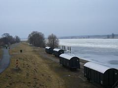 Frozen Oder river at Groß Neuendorf