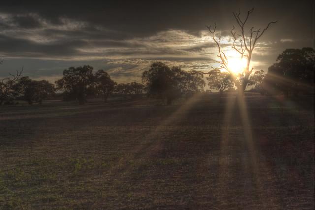 Somerton Road Sunrise 2012-05-01 (_MG_7132_3_4_5_6_7)