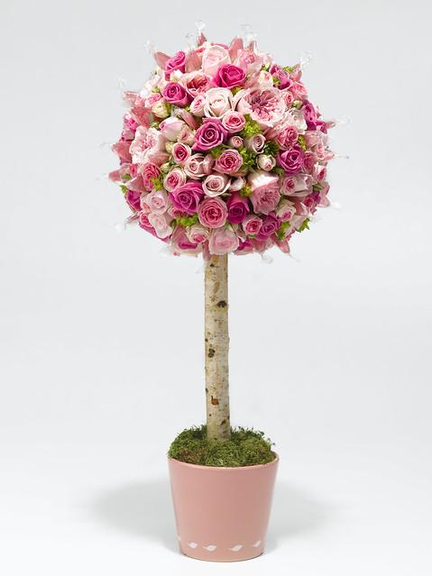 anr-arbol-rosas-caramelos