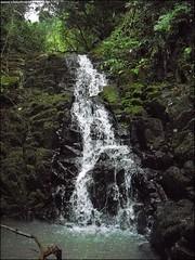322ª Trilha 4 Cachoeiras do Parque Pinhal - Itaara RS_005