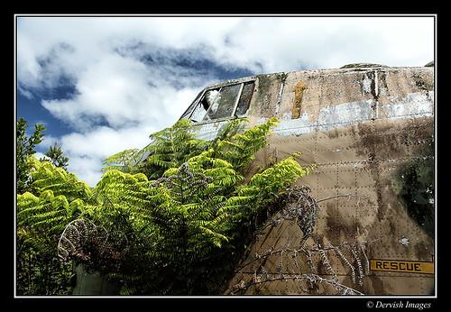 Bristol Freighter Awhitu Peninsula New Zealand