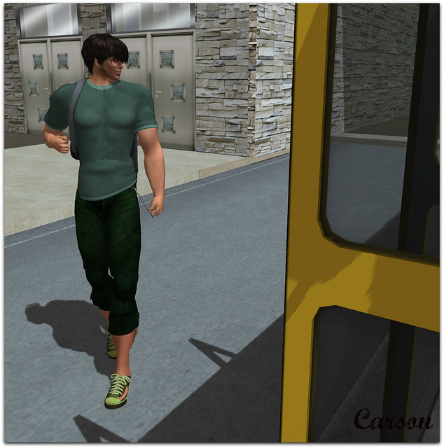 22769 - Skater Capris and Shirt GG (1)