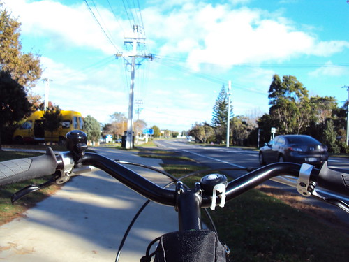 Pugs on the bike path.
