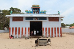 The Hanumar temple