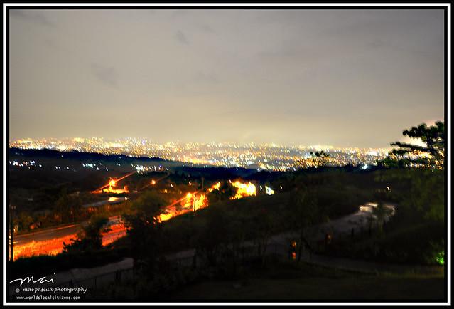 Timberland 012