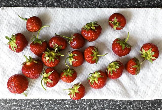 drying the strawberries