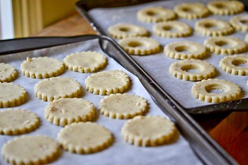 Chocolate Hazelnut Shortbread Cookies 12