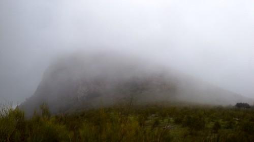 Malaver oculto por la lluvia