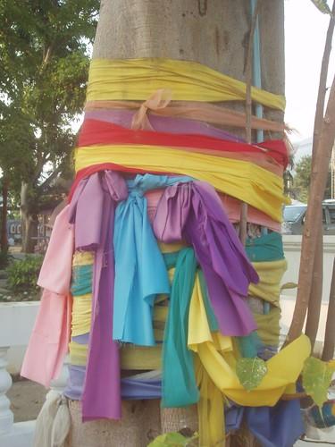 201001190081_bo-tree