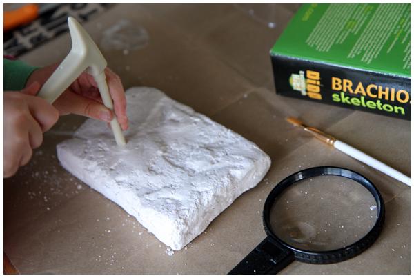 Dinosaur Excavation Kit Activity