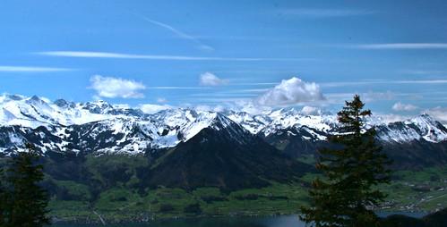 Bernese alps from Rigi