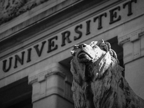 83/366 - The guardian of the university by Flubie