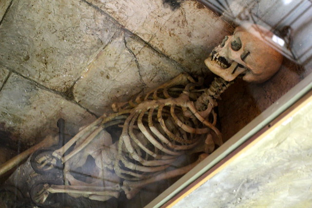The Poggio Catino Skeleton