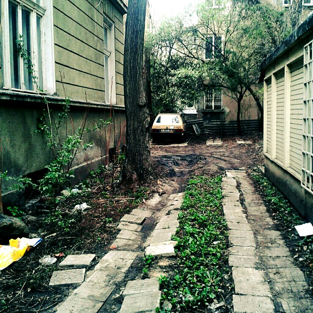 Abandoned driveway