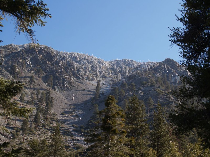 Rime ice high above Icehouse Canyon on Telegraph Peak