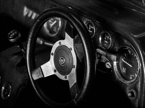 Tiger Cockpit