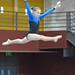 Artistic Gymnastics National Championship 2012-56.JPG