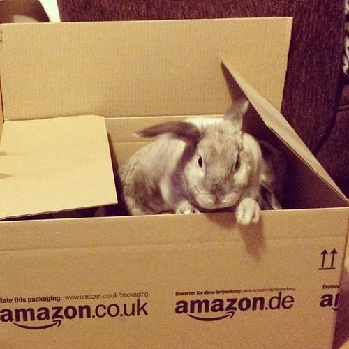 I claim this box as mine!
