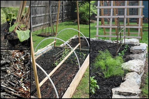 20120325. Early spring garden.