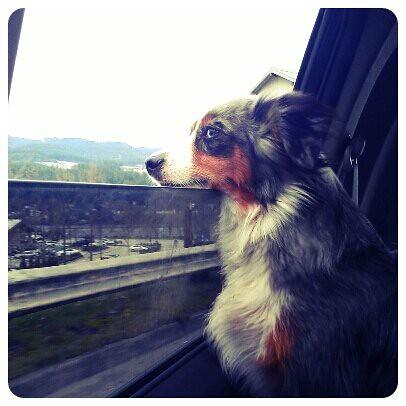 Feel that fresh air!