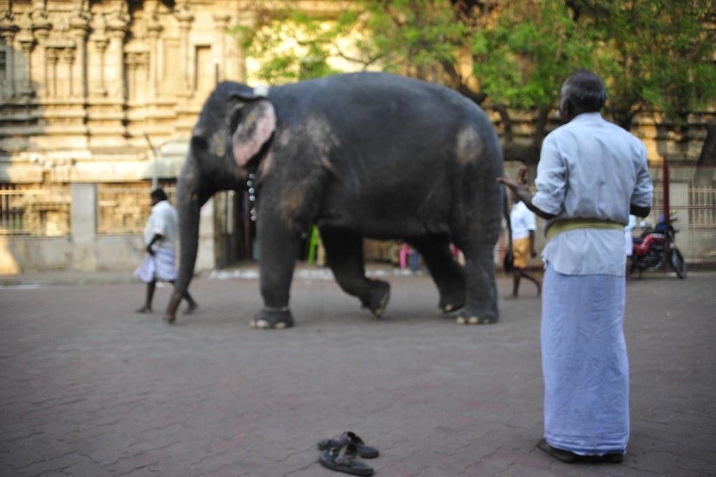 Incredible India - Marvelous Madurai