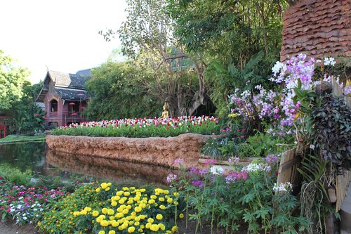 20120123_2506_Wat-Phan-Tao-garden