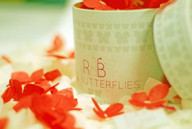 Rice Butterflies_Press Photo_64