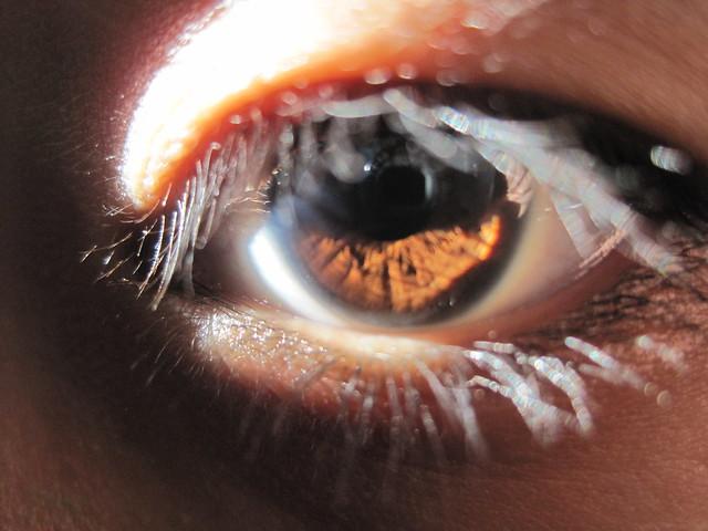 Brown Eye in Sunlight