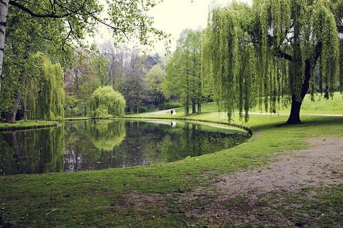 smygfotar bröllopspar i park, bryssel