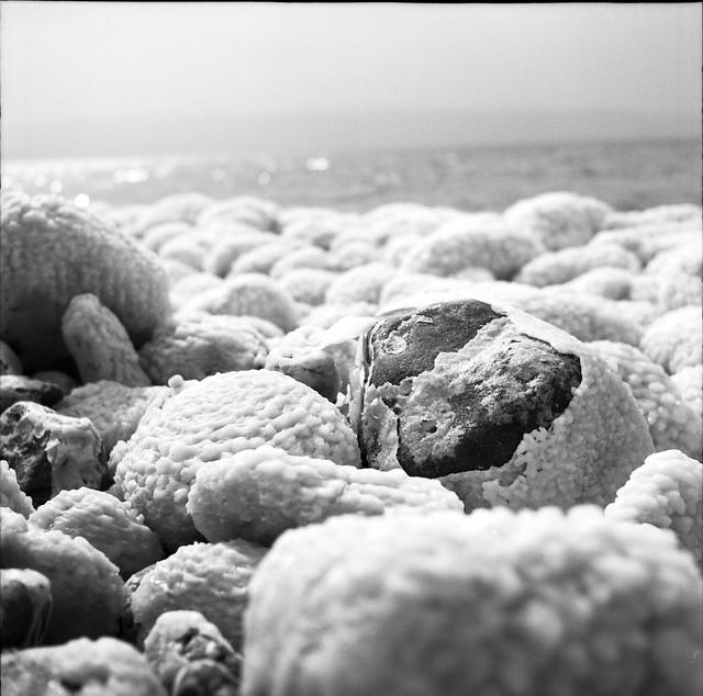 Dead Sea - salty rocks