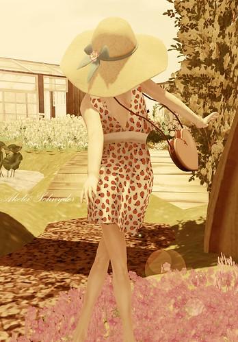 Lady Bug by Reto'