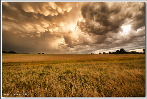 Historia de una tormenta (1/3) by dedaimiel