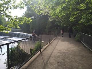 River Dodder greenway