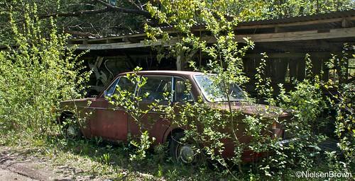Red Volvo