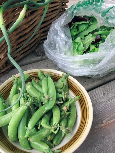 A bowl of plump sugar snap peas.