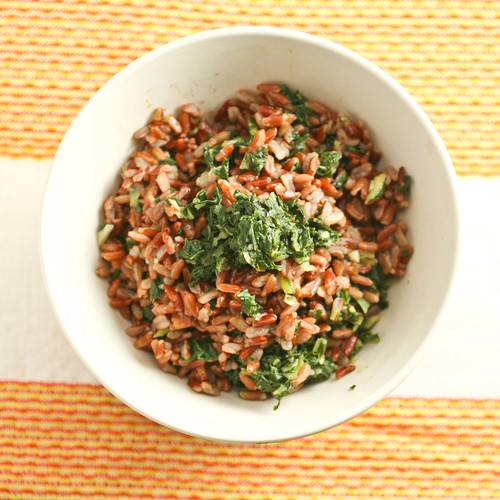 Indian Style Mustard Greens (1 of 3)
