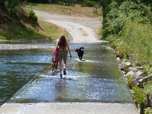5-26-12 CA - Ruth Lake 49 Bike Ride Tuesday at Creek closer