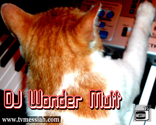 dj mix master wonder mutt on keys