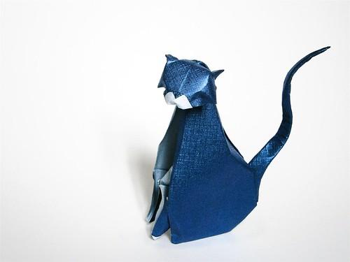 Wise Cat (aka IIMORI Cat) by mitanei