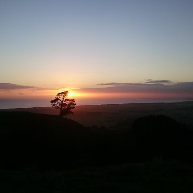 Sunrise 15.05.16