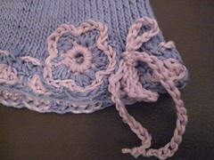 15-2012 Cotton IMG_5552