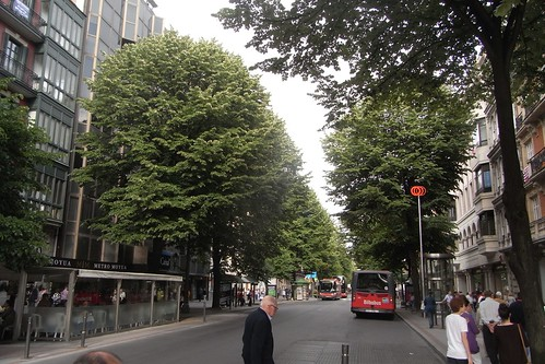 Grandes árboles en Gran Via Bilbao.