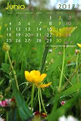 Calendario Junio 2012