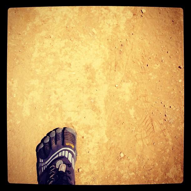 #outandabout #photoadayjune #photoadayjune_hashimaree #hiking #vff